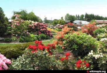 Okrasné zahrady Kapias v Polsku